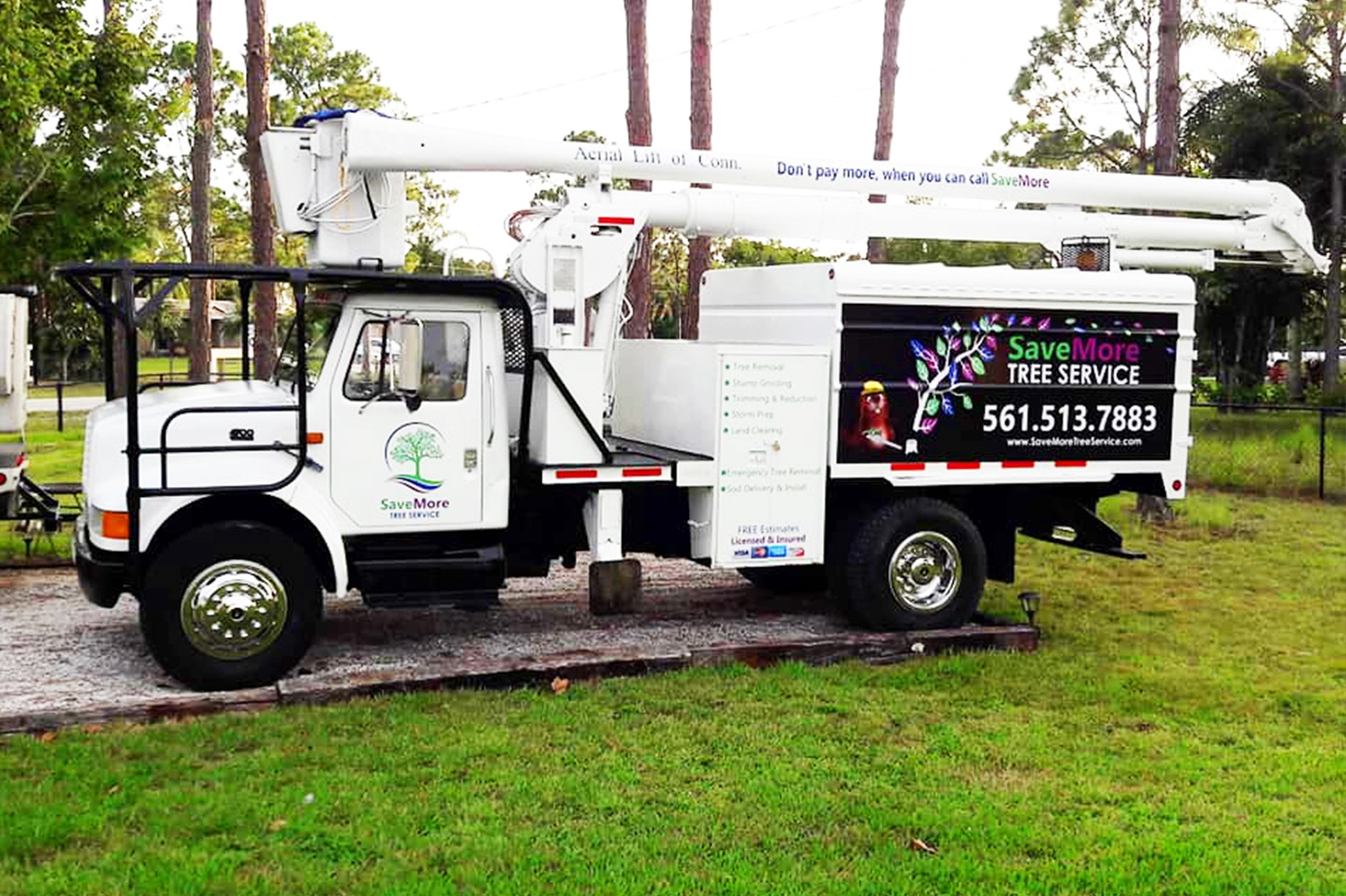 SaveMore Tree Service - Loxahatchee, Florida