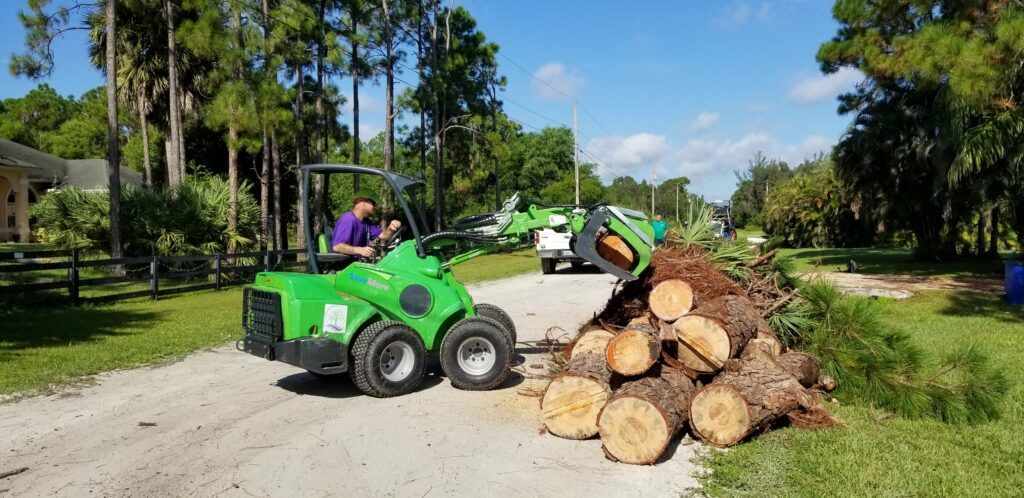 Land and Lot Clearing Loxahatchee - SaveMore Tree Service
