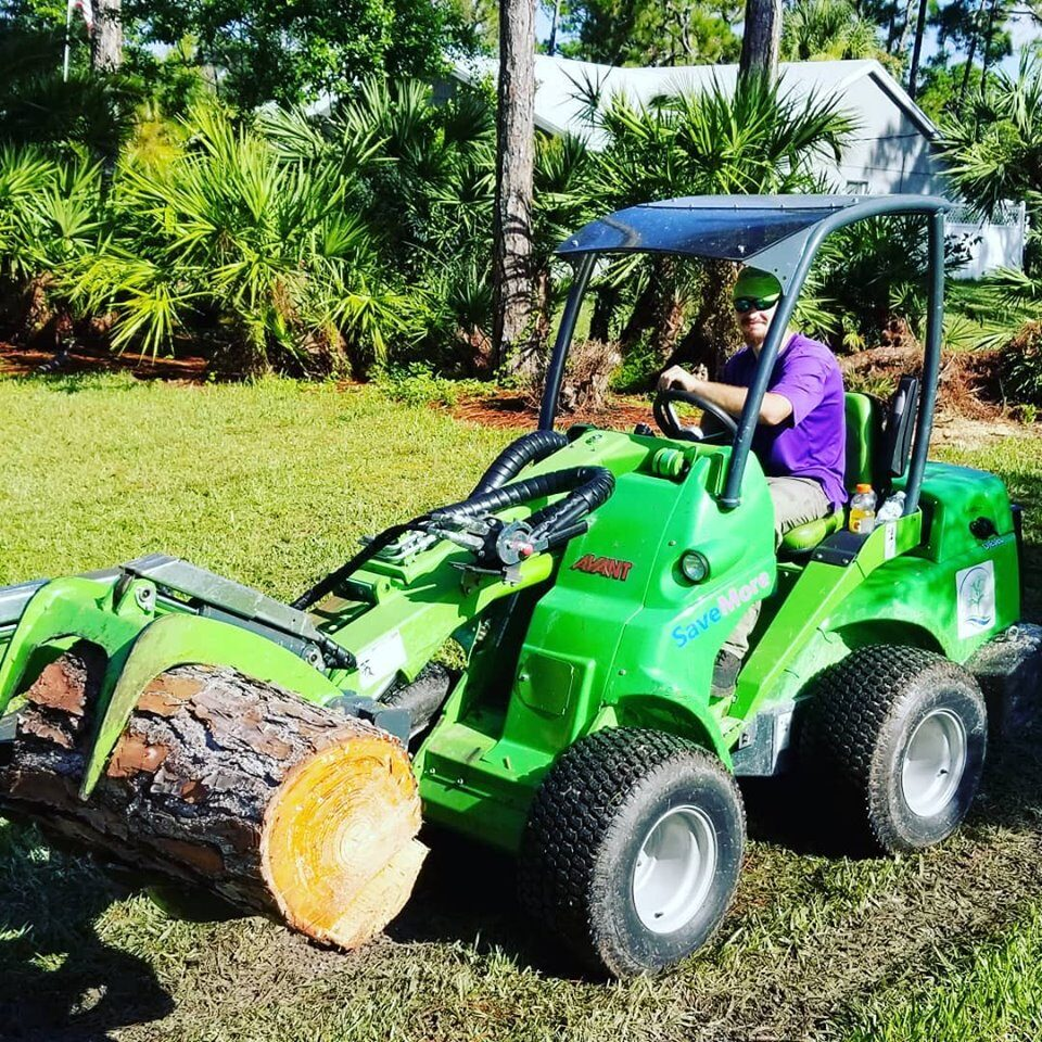 Tree Removal Loxahatchee, Royal Palm Beach, Wellington, West Palm Beach - SaveMore Tree Service